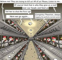 I think the chickens know our governments