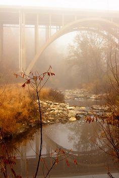Foggy Frick Park by Melissa @ PPC, via Flickr