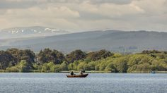 Fly fishing for wild brown trout on Loch Eye, near Tain and the route in Scotland. North Coast 500, East Coast, Trout Fishing, Fly Fishing, The Loch, Brown Trout, Scotland, Scenery, Wildlife