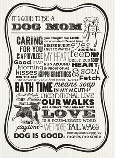 Happy Mother's Day to the moms with fur kids too! Schnauzers, I Love Dogs, Puppy Love, Pugs, Chihuahuas, Beagles, Dachshunds, Amor Animal, Crazy Dog