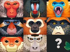 Monkeys are now alive on Behance ! Check it out