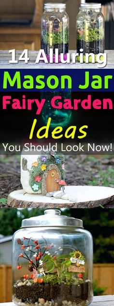 Mason jar fairy gardens can be great gifts or nice decorative objects for your home and garden. Find here 14 best DIY ideas with their tutorials.