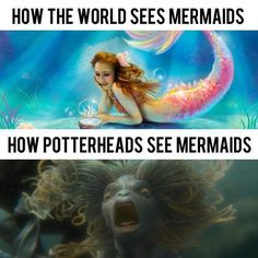Your Daily Scoop Of funniest Harry Potter Memes Ep 16 - - Ellise M. Your Daily Scoop Of funniest Harry Potter Memes Ep 16 – – Harry Potter World, Harry Potter Humor, Mundo Harry Potter, Harry Potter Facts, Harry Potter Characters, Harry Potter Hogwarts, Harry Potter Memes Clean, Harry Potter Stuff, Memes Humor