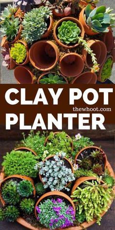 You will love these fabulous Clay Pot Planter Ideas and we have included a Clay Pot Wreath and also a Clay Pot Succulent Sphere. Clay Flower Pots, Flower Planters, Clay Pots, Clay Clay, Clay Pot Projects, Clay Pot Crafts, Shell Crafts, Garden Spheres, Garden Pots