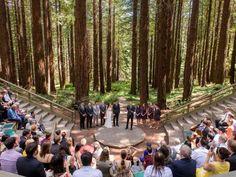 See How One Couple Threw an Eco-Friendly, Zero-Waste Wedding