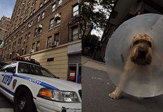 New York / Manhattan