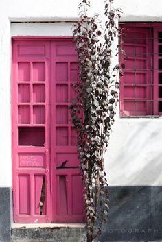 Pink in Guadalajara