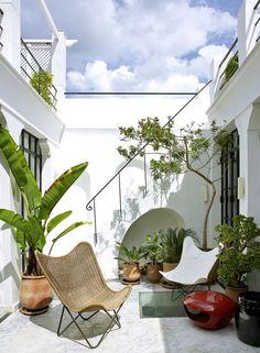 Inspiration déco : cette cour lumineuse et design, véritable oasis de détente dans la ville