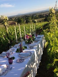 Wedding in our vineyard. For unforgettable moments.  Baracchi Winery. Winelovers. Tuscany. Cortona  hold our spot we are on our way !!  @Chef Robin White @Chatterworks