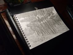 Shady grove (View from a different angle) by Ingrem48 on DeviantArt