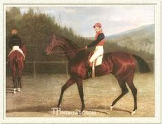 Priam(1827)(Colt)Emilius- Cressida By Whiskey. 2x4 To Whiskey, 4x5 To Highflyer & Matchem, 4x5x5 To Eclipse, 4x5x5x5 To Herod. 19 Starts 17 Wins 1 Second 1 Third. Won 1830 Epsom Derby, 1831 & 1832 Goodwood Cup @ 2 & 5/8 Miles.Leading Sire In England In 1839 & 1840. Sent To U.S. Where He Was Leading Sire In 1842, 1844, 1845, 1846. Died In 1847.