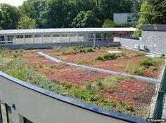 """Résultat de recherche d'images pour """"toiture végétalisée immeuble"""" Images, Search"""