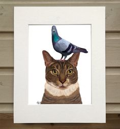 Tabby cat wall art  Pigeon on Head  calico cat print tabby