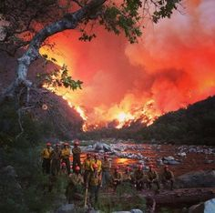 Los Prietos Hotshot Crew at their best....Kings River on the Rough Fire.