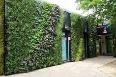 Image result for biophilic library Water Valves, Sidewalk, Wall, Green, Image, Vertical Gardens, Side Walkway, Walkway, Walls