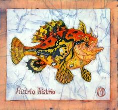 Frogfish batik by Marina Elphick Artworks