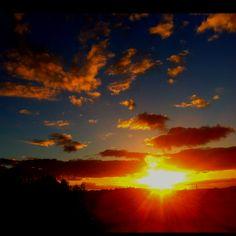 Bondi sunrise from my sunroom. Bliss.