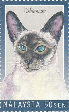 Siamese Cat - Postage stamp, Malaysia (1999)