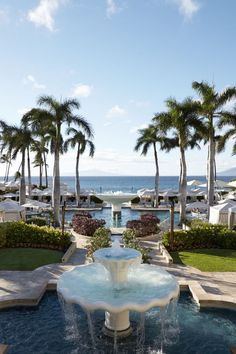 A list of the best hotels in Maui, Hawaii including Four Seasons and more. best hotels in nyc Hotels In Maui Hawaii, Best Hotels In Maui, Maui Resorts, Maui Vacation, Hotels And Resorts, Luxury Resorts, Bermuda Hotels, Honolulu Hawaii, Vacation Spots