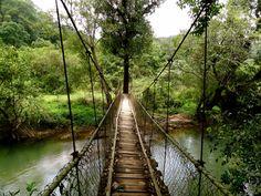 Hanging Bridge at Meriyanda Coorg ( Courtesy Shivya Nath's blog) # Resort in Coorg, Coorg http://www.meriyanda.com/