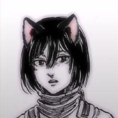 Mikasa, Anime Cat Boy, Anime Cat Ears, Manhwa, Cat Icon, Aot Characters, Attack On Titan Fanart, Cat People, Titans Anime