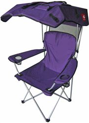1000 Images About Original Canopy Chair Purple On