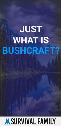 Any survivors interested in bushcraft? This beginner article is a great place to start. Survival Family, One With Nature, Disaster Preparedness, Financial Tips, Survival Skills, Bushcraft, Money Saving Tips, Parenting Hacks, Great Places