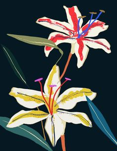 Pure nature • https://static1.squarespace.com/static/58e76bb01b631b9312e8593e/58e906fc15d5dbf58c5dfaa5/58ecaad217bffc97d0271331/1491905322241/flowers-07.jpg?format=750w