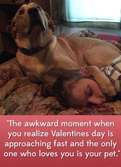 Funny Animal Pictures, Cute Funny Animals, Funny Cute, Funny Dogs, Cute Pictures, Hilarious, Love My Dog, Puppy Love, Cute Puppies