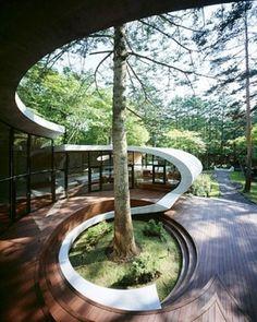 curves, wood, light by StarMeKitten
