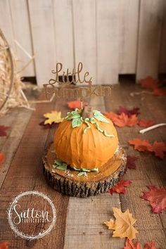 Autumn Smash Cake Sessions With Sutton Photography – emptynesthomegoods Little Pumpkin Smash Cake session- click to see more and to order your custom smash cake props today! // Empty Nest Home Goods // click through for more great handmade party decor!
