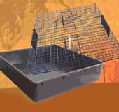 The Squirrelinator is a humane poison-free squirrel trap that allows multiple squirrels to be trapped in one setting.