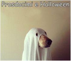 Prosdocimi e Halloween RACCONTO COMICO QUI: http://tormenti.altervista.org/prosdocimi-e-halloween/