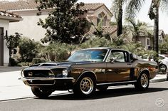 Ford Mustang enthusiast, I'll mostly post Old School Mustangs. Feel free to submit your photos of your Ford Mustang, no matter what year it is. Ford Mustang Shelby Cobra, 1968 Mustang, Mustang Boss, Ford Shelby, Shelby Gt500, Latest Cars, Retro Cars, Car Pictures, Mopar