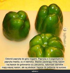 Lajfhaki.pl - Odwróć paprykę do góry nogami. Papryka z 3 wzgórkami to  papryka męska, a z 4 damska. Męskie zawierają mniej nasion  i są lepsze do gotowania czy pieczenia, natomiast damskie  mają więcej nasion, ale są słodsze i lepsze do jedzenia na surowo.