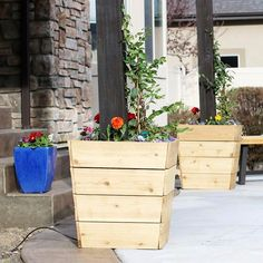 Youll never believe what these DIY planters are hiding! Comehellip