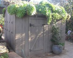 Succulent shed! How cute is this?