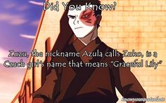 Fun fact avatar the last airbender