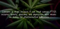 #Cannabis can cause serious damage to industries that depend on prohibition.