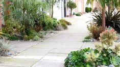 Sidewalk paver replacement gardens