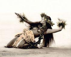 #hula #daner #Hawaii Ka Leo o Kaa Makani, The Voice of the Wind