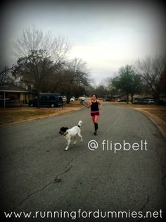RUNNING FOR DUMMIES: The FlipBelt Review and Giveaway - I Flippin' Love It!