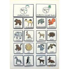 Třídíme: Zvířata ze ZOO / Volně žijící. Strukturované učení