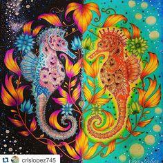 Instagram media desenhoscolorir - Um espetáculo! By @crislopez745 #johannabasford #lostocean #oceanoperdido #cavalosmarinhos #desenhoscolorir