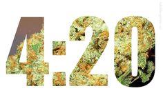 420 Gif