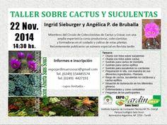 .:: Casas & Cosas Tandil   De Interés - Cursos, Eventos y Exposiciones: Taller sobre cactus, crasas y suculentas ::.