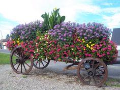wagon planter