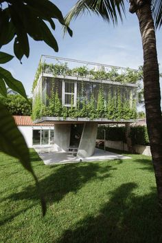 A Restaurateur's Mythical Home in Miami Follows the Path of the Sun - Dwell