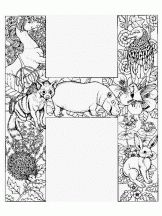 alphabet animal h