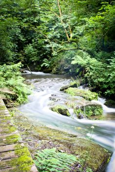 Amazing Snaps: St Nectans Glen....